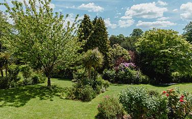 Summer Garden Sessions 2019