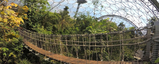 eden-project-things-to-do-when-it-rains-in-cornwall-st-austell