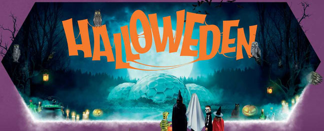 halloweden-the-eden-project-cornwall-things-to-do-at-halloween-the-alverton-hotel-truro
