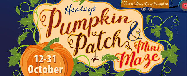 healeys-cyder-farm-pumpkin-patch-halloween-events-in-cornwall-this-october-the-alverton-hotel-truro