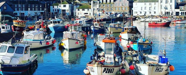 Lots of boats in Mevagissey harbour
